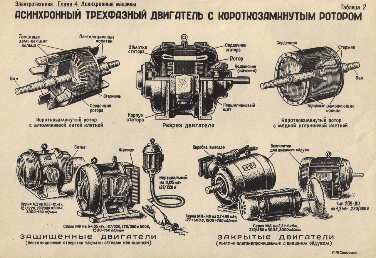 Схема двигателя с короткозамкнутым ротором